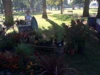 Genevea Unruh Garden Gleanings Glenn CA 530-518-7357