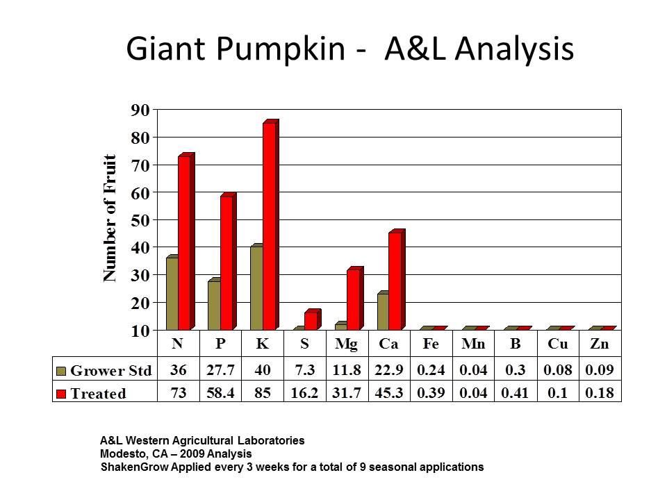 a___L_pumpkin_analysis_jpg
